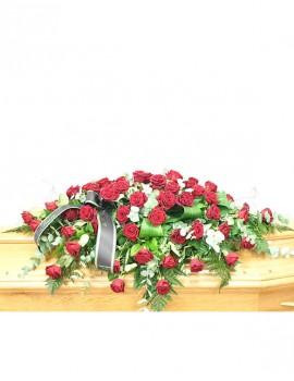 copricassa rose
