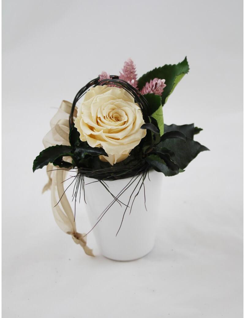 Agapanthus Foglie Gialle composizione con rosa stabilizzata - tropical flowers